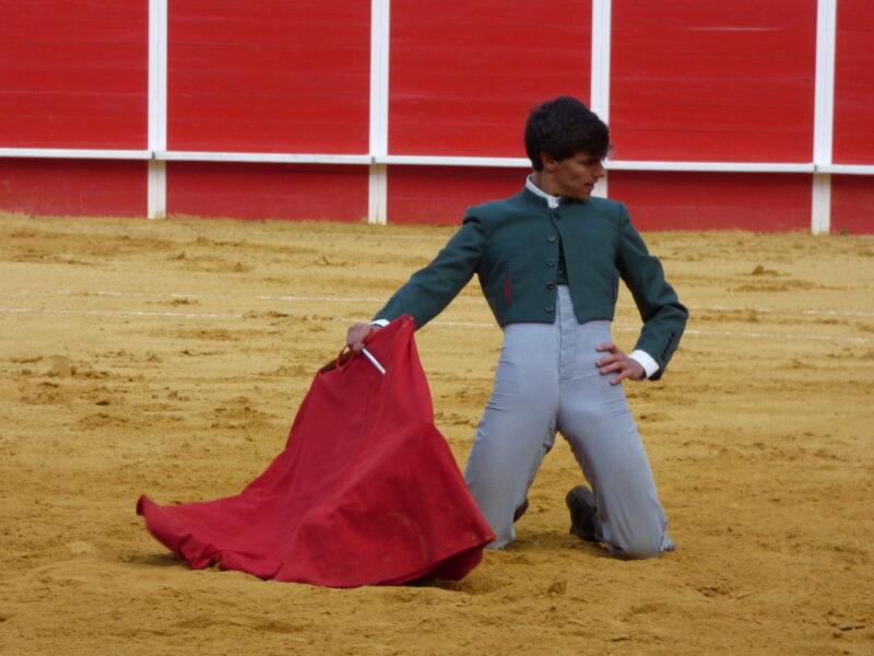 Ganador III Bolsín Taurino Ciudad de Llerena
