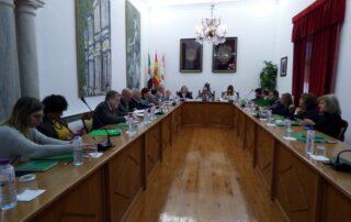 Pleno Consejo Económico y Social en Llerena