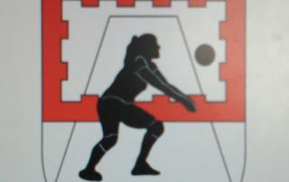 club voleibol llerena